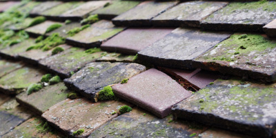 Cheadle roof repair costs